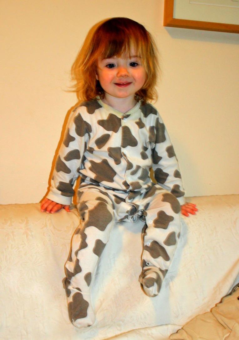 jamie cows